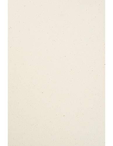 Netuno 50 Blatt Creme Naturkarton DIN A4 210× 297 mm 240g Flora Giglio Recycling-Karton Natur Vintage Bastel-Karton Natural bunt Feinkarton Eco Kartenkarton recyclingfähig für Einladungen