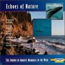 The Sounds Of Aquatic Mammals In The Wild