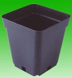 TEKU Topf, viereckig, stabil, 10 x 10 x 11 cm, 0,69 L