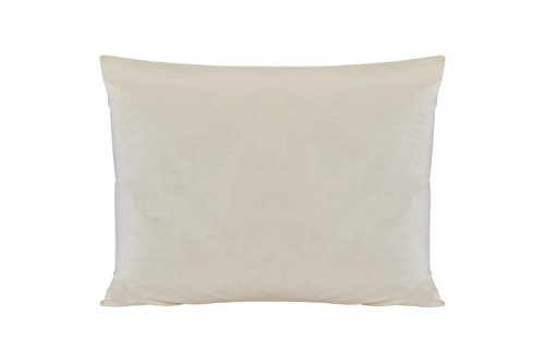 Sleep & Beyond 20 by 26-Inch Washable Wool Pillow, Standard, Natural