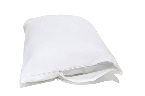 National Allergy Queen 2 Pack Pillow Cover, White
