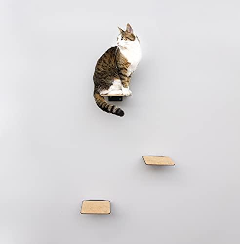 LucyBalu Kletterwand für Katzen I Katzentreppe 3er Set I Steps 18x18 cm I Steps XL 20x24 cm I Weiß und Anthrazit