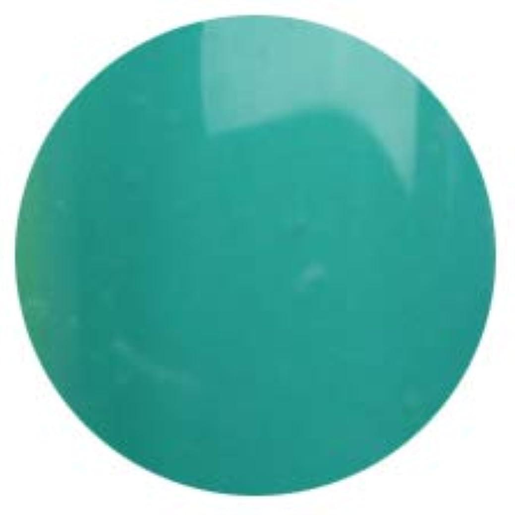 噴出する偏見伝統T-GEL COLLECTION カラージェル D140 エメラルドブルー 4ml