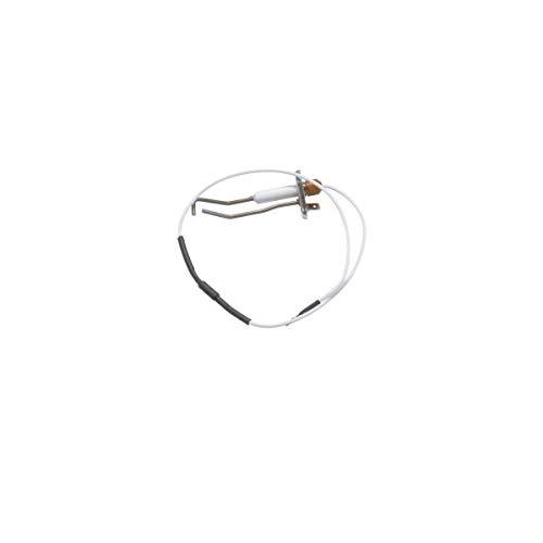 Recamania Elettrodo accensione caldaia BIASI BIASI BI1363103