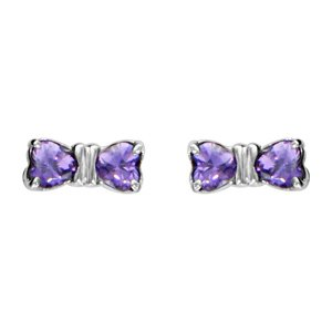 1001 Bijoux – oorbellen steel chirurgisch staal lus paarse stenen hartvorm