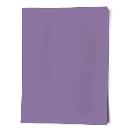 Royal Consumer Poster Board, Lavender, 22'X28', Pack of 25 (24312B)