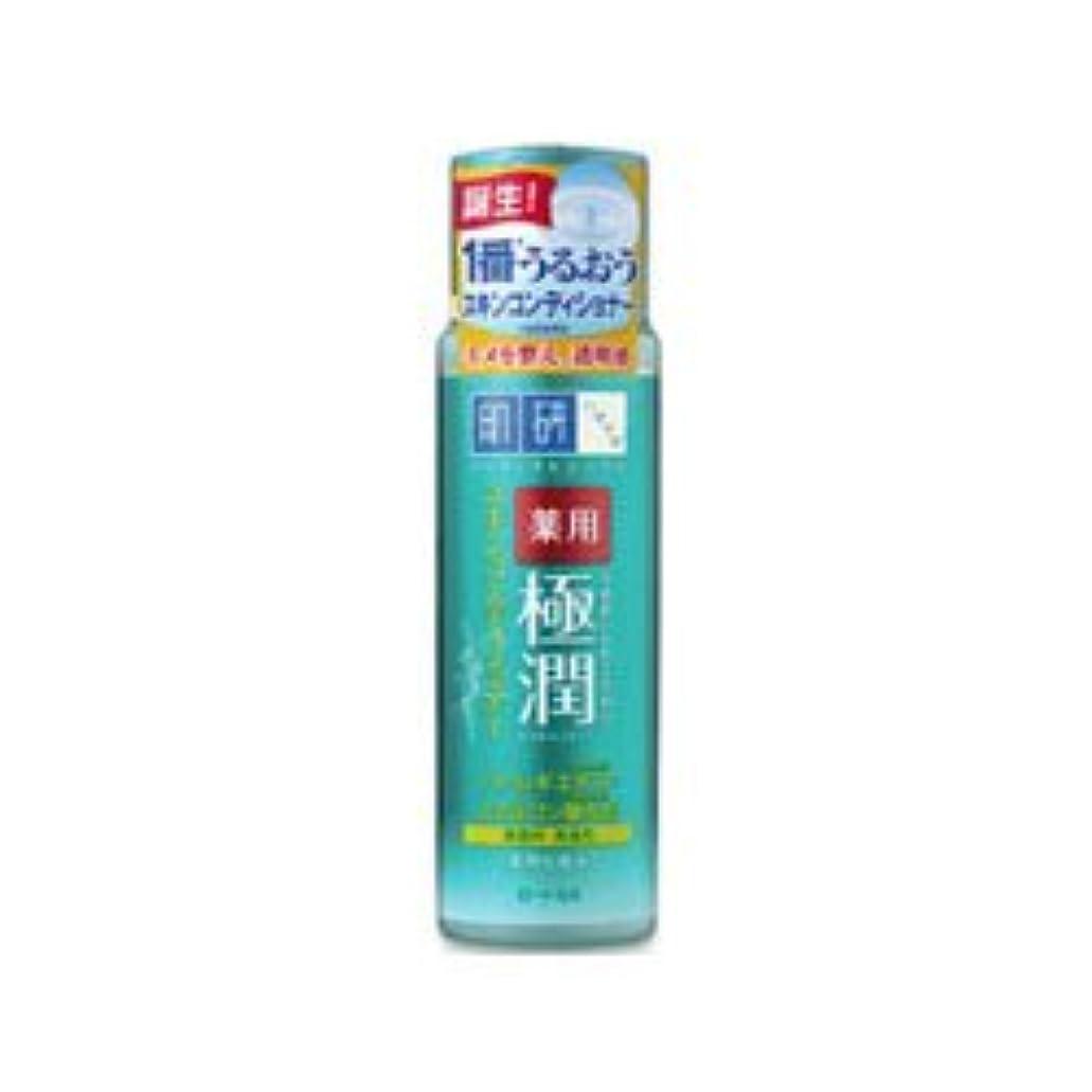 全員かなりの海外【ロート製薬】肌研 薬用極潤スキンコンディショナー 170ml(医薬部外品) ×3個セット