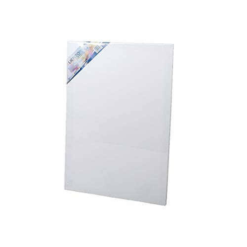 EUROXANTY® Lienzo para pintar | Lienzo de tela | Bastidor de madera | Para todo tipo de técnicas de pintura | Tela de 380 g/m2 | Lienzo de espesor 16 mm | 50 x 70 CM