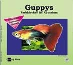 Guppys: Farbkleckse im Aquarium (Aqualog mini)