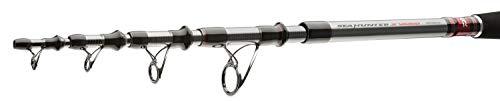Daiwa Canne télescopique pour pêche d'eau salée et...