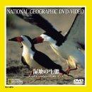 湿地の生態 [DVD]