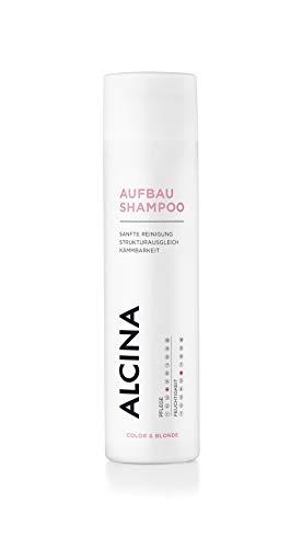ALCINA Aufbau-Shampoo - Sanfte Reinigung für blondiertes, trockenes oder strapaziertes Haar - 1 x 250 ml