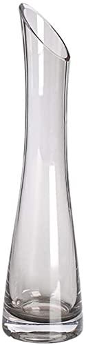 XIAOZHEN Jarrón Hermosas artesanías Vidrio Jarrón Salón Salón Comedor Jarrón Obliculio Botella Cuello Fino Cintura Jarrón Crystal Clear Jarrón (Color : Clear)