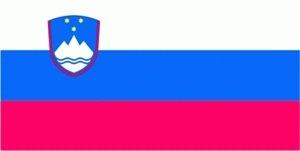 FRIP - Slowenien Fahne Flagge Grösse 1,50x2,50m XXL