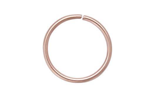 HoitoDeals Anillo de nariz circular para cartílago de labios, hélice, tragus, piercing de oreja para hombres, mujeres (1 anillo de nariz)