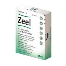 HEEL Zeel - 5 Ampollas x 5 ml