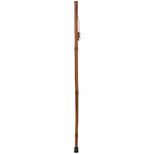 Brazos Free form Iron Bamboo Walking Stick, For Men and Women, Lightweight, Handcrafted in the USA, 48 inches, Red