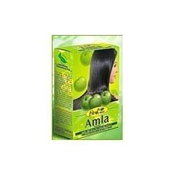 Hesh Pharma Amla Poudre pour cheveux 9,5 ml
