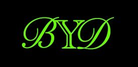 Beyond Dreams Bandagen + kostenlose Lieferung | Handgelenkbandage | Handgelenkstütze | Handgelenkschoner | Bandagen für Bodybuilding + Fitness + Crossfit - 4