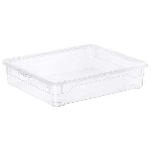 Rotho Clear Box Shirt Aufbewahrungsbox 9 l  mit Deckel, Kunststoff (PP), transparent, 9 Liter (40 x 33,5 x 8 cm)