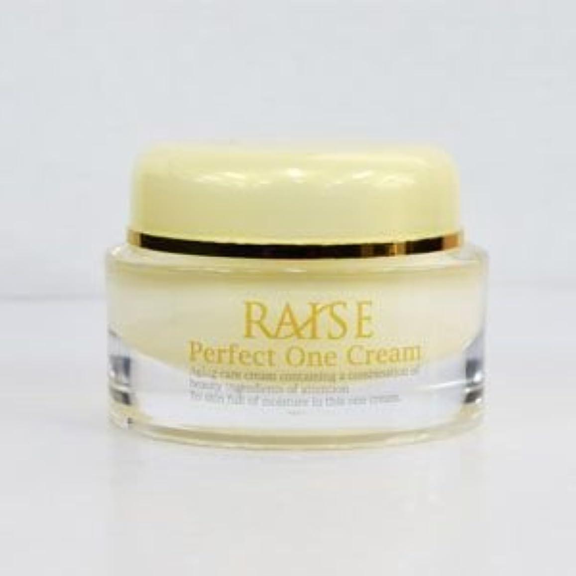 マウスピースつぼみ満足させるRAISE (レイズ) Perfect One Cream パーフェクトワンクリーム 活性型FGF 活性型EGF 馬プラセンタ コラーゲン オールインワン クリーム 50g