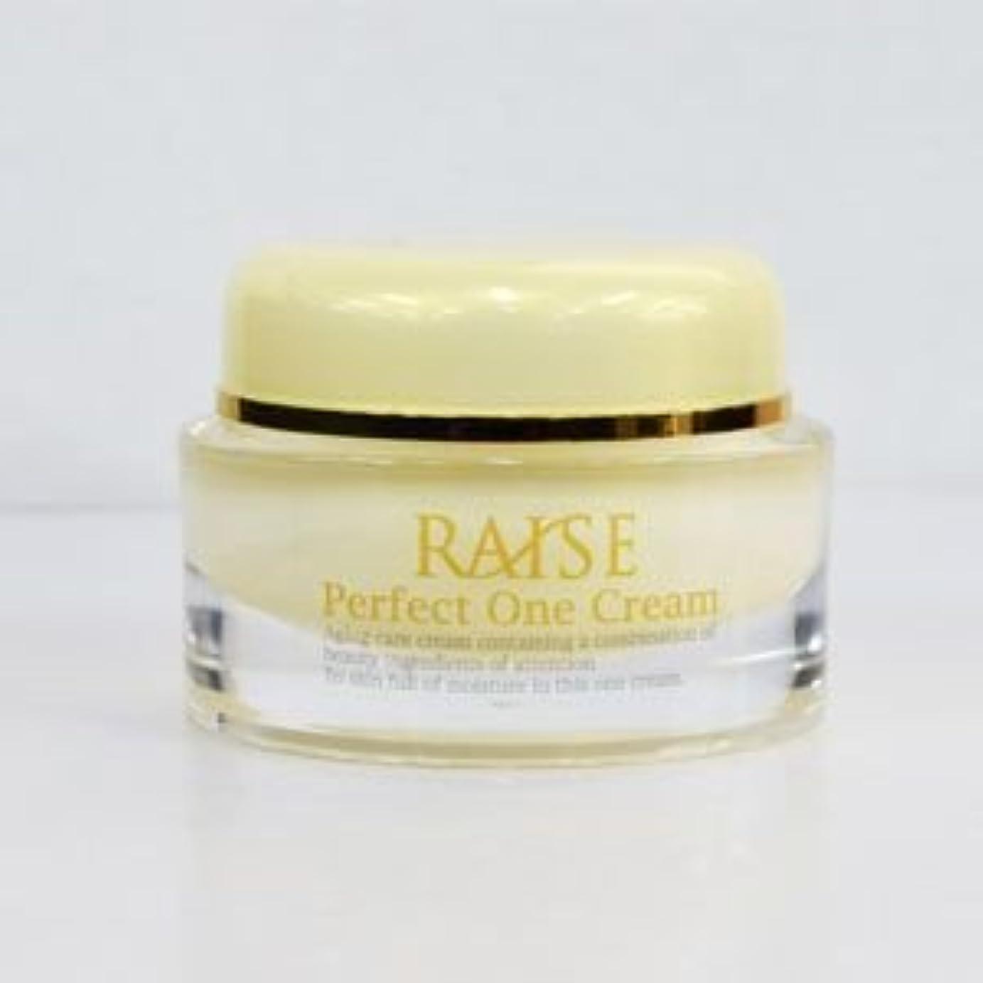 達成可能夜明けに夕暮れRAISE (レイズ) Perfect One Cream パーフェクトワンクリーム 活性型FGF 活性型EGF 馬プラセンタ コラーゲン オールインワン クリーム 50g
