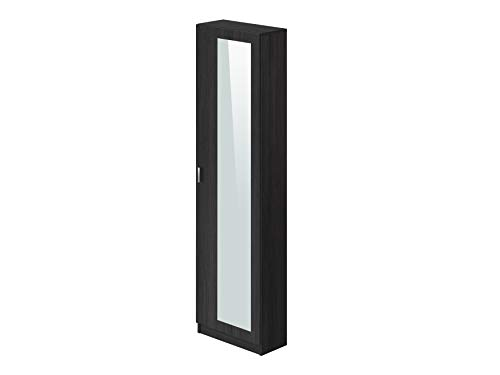 Marca Amazon -Movian Indre Modern - Armario zapatero de 1 puerta con espejo, 23 x 50 x 179 cm (gris)
