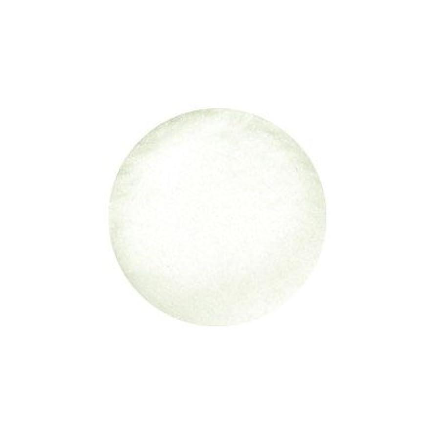 部分樹皮コンテンツB.N クリスタリーナ ジュエルグリッター オーロラレモン 100ミクロン CRN-10