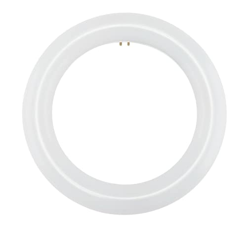 NYLL - 8 Inch/ 8' Plug & Play T9 Circline LED Lamp - Daylight (6000K) Circular Bulb Directly Relamp & Replace 22 Watt Fluorescent Bulb FC8T9/D (Without rewiring or Modification) - Ballast Required!