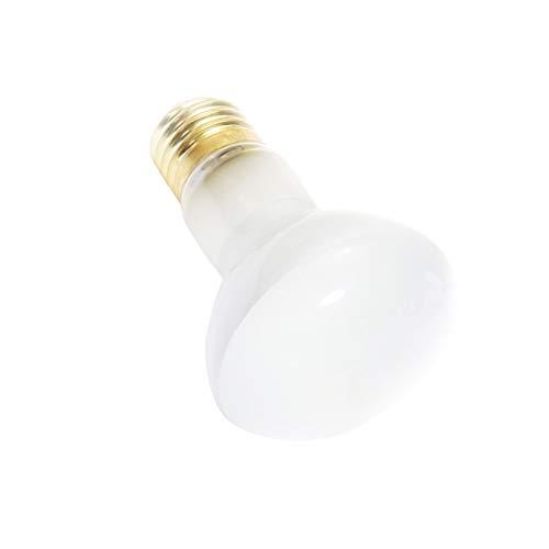 POPETPOP Rettile Lampada Termica Rettile Luce UV Lampada riscaldante Lampadina per...