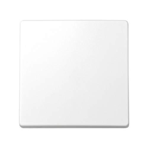 Simon 73010-60 - Tecla Interruptor y Conmutador s-73, Blanco