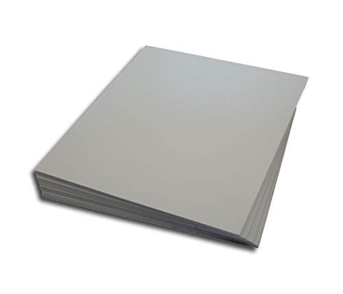 LP Schallplatten Registerwände grau Protected (25 Stück)