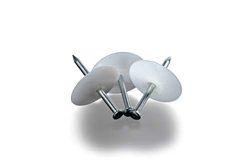 Kimmel 21-400-0012 Lot de 50 rondelles à ongles 34–3,3 x 50 cm Naturel Petit