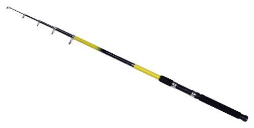 SHAKESPEARE Beta Noir - Caña de Pesca de lanzado (Principiantes, Aluminio, telescópico, Spinning, 10 pies (3,05 m), 2 Secciones), Color Negro, Talla 10 Ft