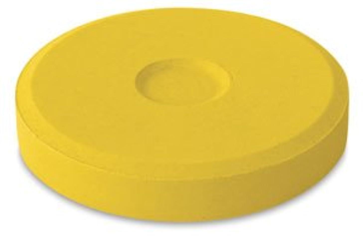 Jack Richeson 101108 Mini Deep Gold Tempera Paint Block, 6 Pack