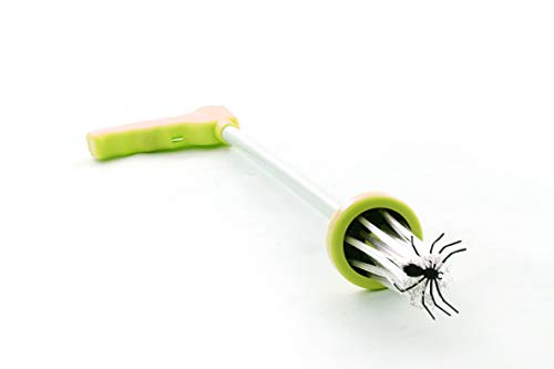 Spider Catcher Clamshell - Green Insect Bug Trapper Remover