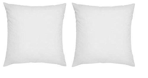 Ikea 20' x 20' Fjadrar Duck Feather Filled Inner Cushion - Set of 2