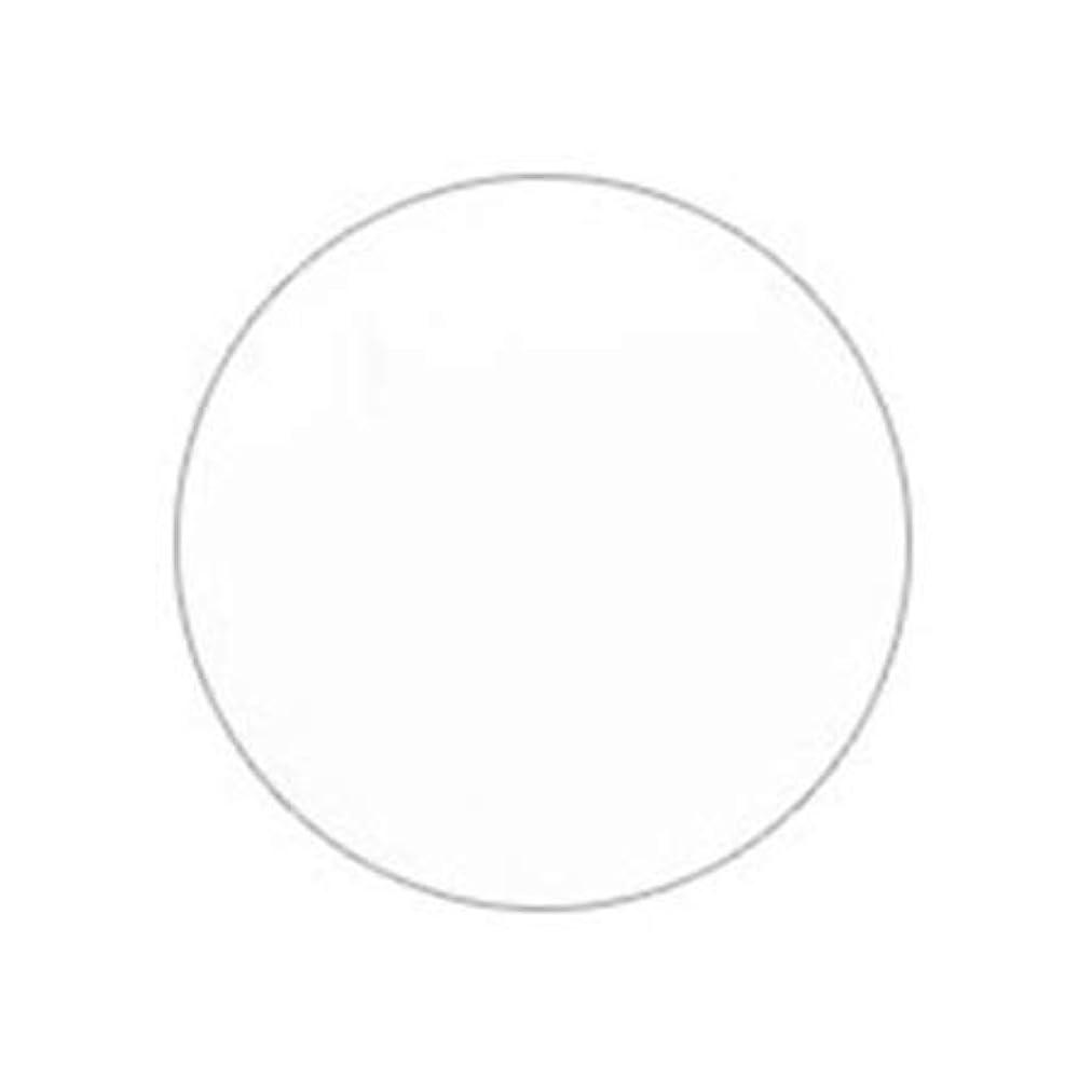 休戦葡萄内なるPutiel プティール カラージェル 201 ホワイト 4g