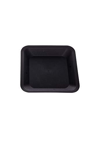Nuova Pasquini e Bini Dessous de verre carré 30,5 x 30,5 cm