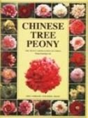 Chinese Tree Peony