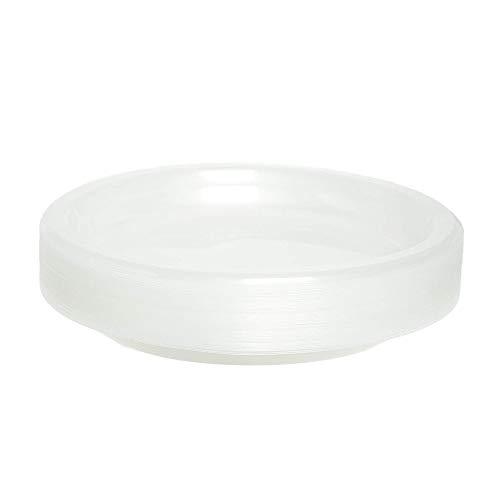 Paquete de 40 platos de fiesta desechables   platos de plástico grandes ~ transparente ~ 10 pulgadas (26 cm) ~ ideal para fiestas, eventos catered y hogar