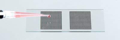 Diversified Biotech GRID-1000 Microscope Slide Grid, 20 mm Width, 20 mm Length (Pack of 40)