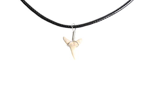 Sand Shark Tooth Necklace for Boys Girls Teens Kids Men covid 19 (Fossil Leather Necklace coronavirus)