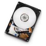 Hitachi Travelstar 5K500.B 250 GB Festplatte SATA 5400rpm 8MB (innen) (HTS545025B9A300)