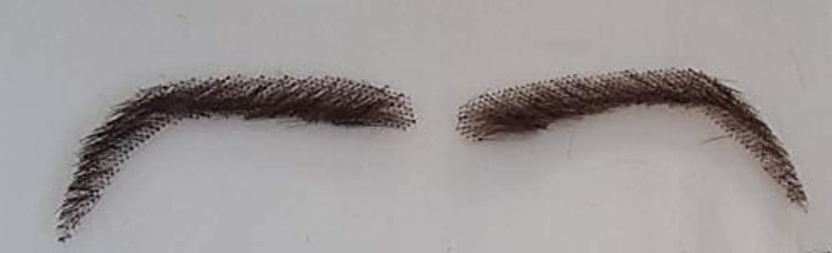 PrettyLoxx Real Hair Lace Eyebrows x1 pair with adhesive and eyelashes shape 12 (2)