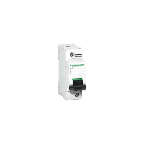 Schneider Electric A9N18448 Interruptor Automático Magnetotérmico C120H, 1P, 125A, curva C