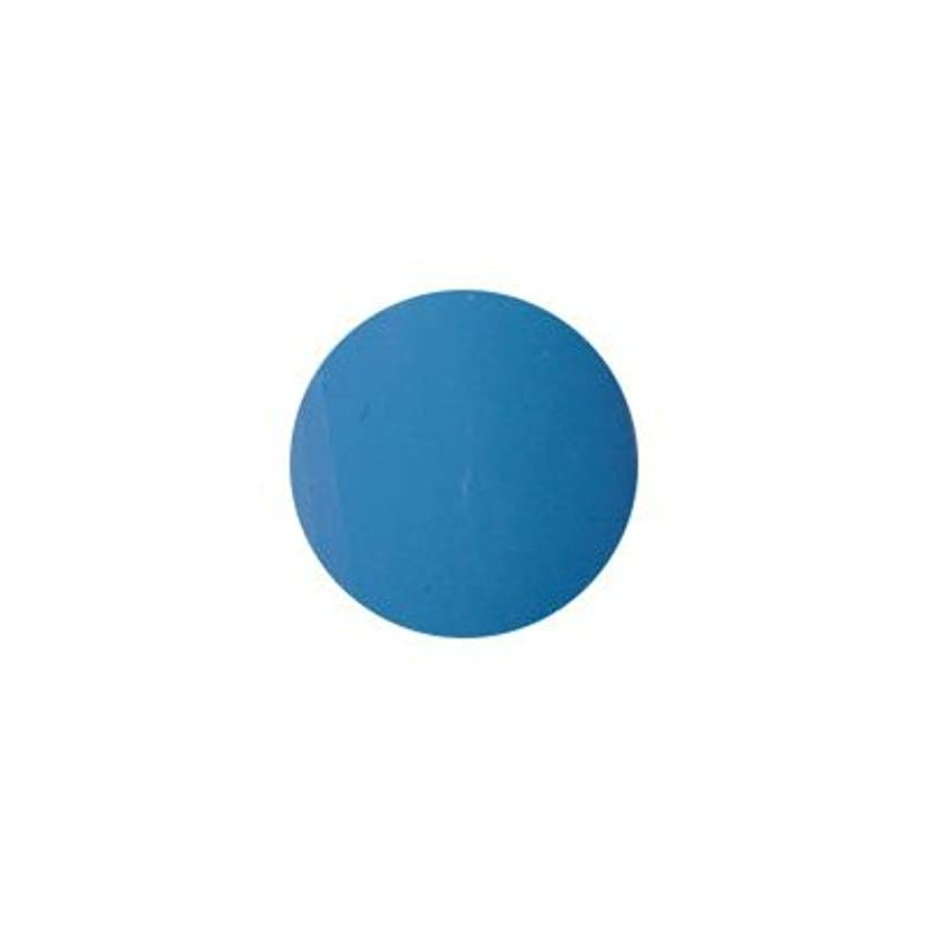 寄稿者寄り添う放散するプティール カラージェル ラヴィング L20 ロイヤルブルー