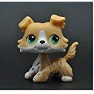 Five Stars Store Littlest Pet Shop Without Magnet Pet Collie Dog Child Girl Figure Toy Loose Cute