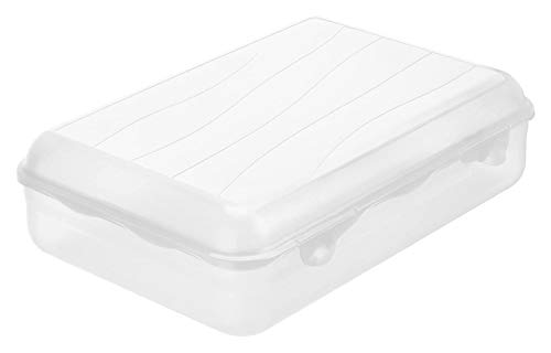 Rotho Fun Vesperdose 3,95l mit Klickverschluss, Kunststoff (PP) BPA-frei, transparent, 3,95l (30,0 x 21,0 x 8,0 cm)