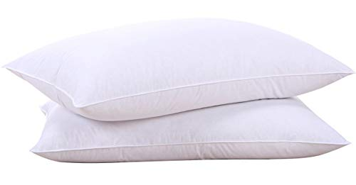 puredown Natural Goose Down Feather White Pillow Inserts, 100% Egyptian Cotton Fabric Cover Bed Pillows, Set of 2 Queen Size